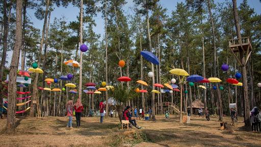 Pesona Kemit Forest Education, Tempat Wisata Kekinian di Cilacap