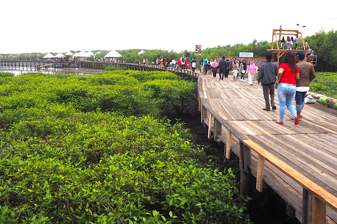 Tempat Wisata Baru yang Wajib Dikunjungi di Probolinggo